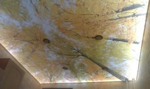 Натяжные потолки с ультрафиолетовой арт печатью